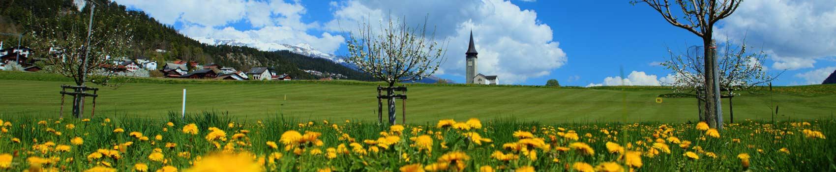 blumen-sagogn-golf