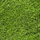 Gras Golf Sagogn
